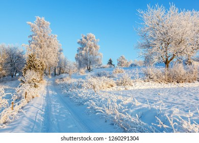 Snowy winter landscape with a dirt road at the fields
