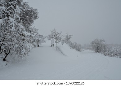 Snowy winter landscape with snow covered trees, road and village diluted in mist