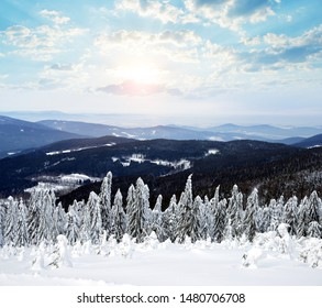 Snowy winter landscape at sunset.  View from mount Pancir in the National park Sumava, Czech Republic.