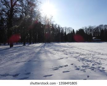 Snowy Winter in Park. Zdrowie Park in Lodz, Poland. - Shutterstock ID 1358491805