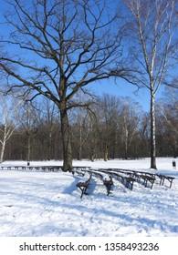 Snowy Winter in Park. Zdrowie Park in Lodz, Poland. - Shutterstock ID 1358493236