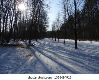 Snowy Winter in Park. Zdrowie Park in Lodz, Poland. - Shutterstock ID 1358494913