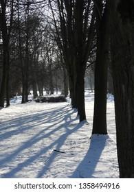 Snowy Winter in Park. Zdrowie Park in Lodz, Poland. - Shutterstock ID 1358494916