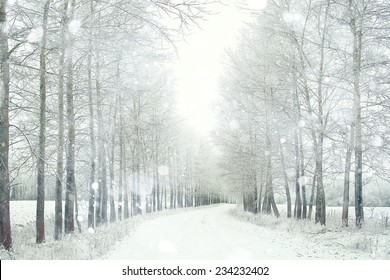 Snowy winter road in a field