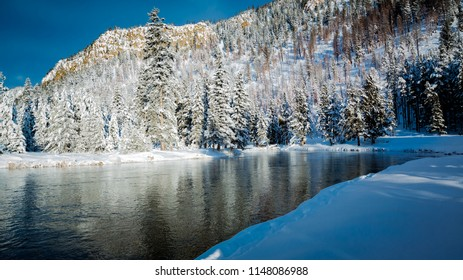 Snowy winter scene of river surrounded by pine trees.