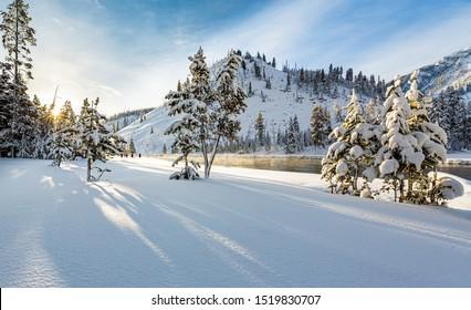 Snowy winter scene at sunrise