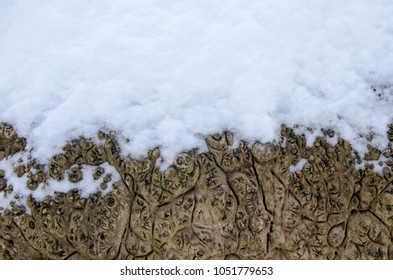 Snowy wood texture