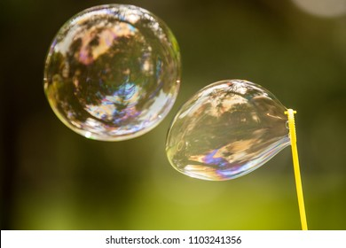 Soap bubble against green background