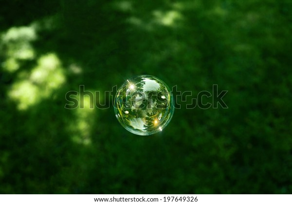 Soap bubble on green grass background