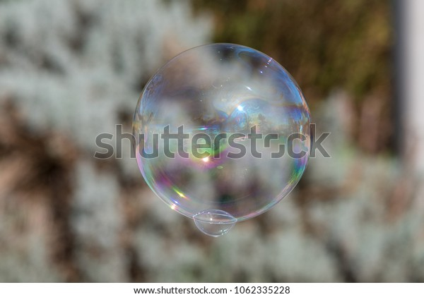 soap bubble with smaller bubble attached and blurred background.