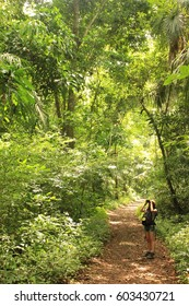 Soberania National Park, Panama - August 6th of 2014: Bird watchers seek for wildlife in this rain forest area established as a national park in 1980 covering 55,000 acres and 220 km2.