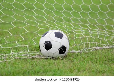soccer ball in goal net.