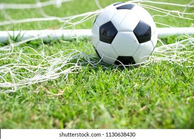 soccer ball in goal net with grass field