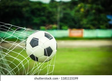 Soccer ball in goal on green grass