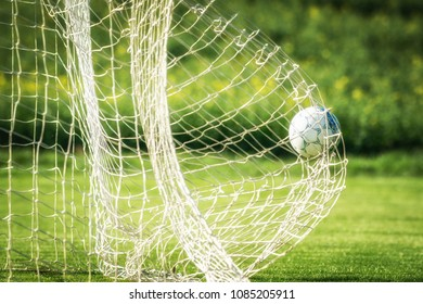 Soccer ball in the goal on grees grass