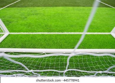 soccer ball green grass field, soccer line