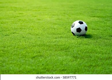 Soccer Rasen Stock Photos Images Photography Shutterstock