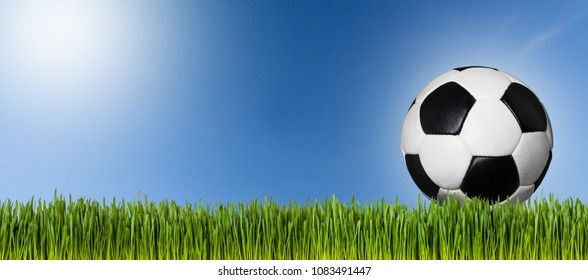 Soccer ball on meadow and blue sky (copy space)