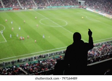 Soccer fans in a match. Furious spectators complaint about a bad decision of the referee. soccer supporters excitement