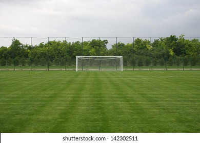 soccer field grass Goal at the stadium Soccer field with white lines on grass