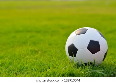 soccer field on grass.
