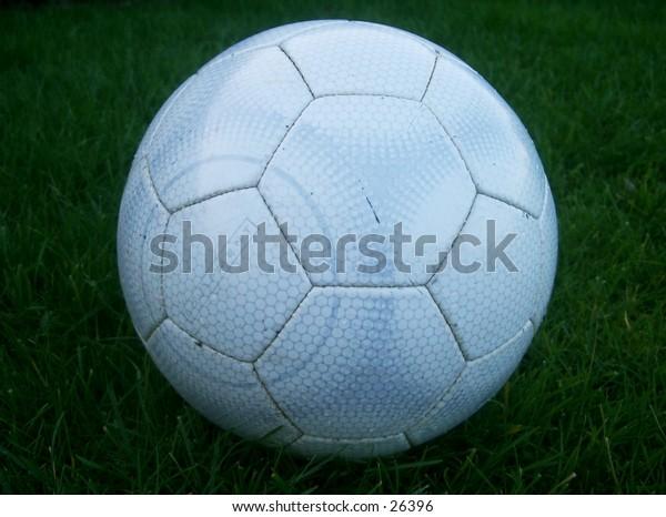 A soccer (football) ball