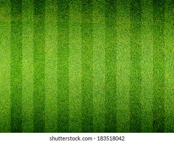 Soccer football grass field