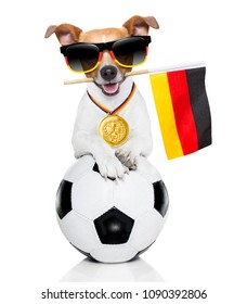 soccer jack russell  dog playing with leather ball  , isolated on white background and german  flag wearing sunglasses