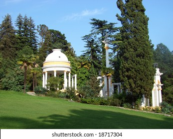 Sochi 2008. A botanical garden with different kinds of trees and bushes. Russia, Sochi