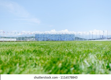 "Sochi, Adler, Russia, 13 June 2018: Green grass in foreground and Ice Palace ""Iceberg"" in Olympic park in summer, focus on foreground, 13 June 2018."