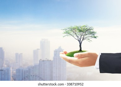 Socially responsible investing concept: Businessman hands holding big tree over blurred big city background