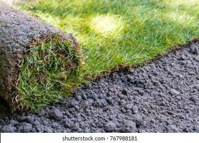 sod grass rolls ready for installing