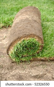Sod Roll Being Unrolled for a New Lawn