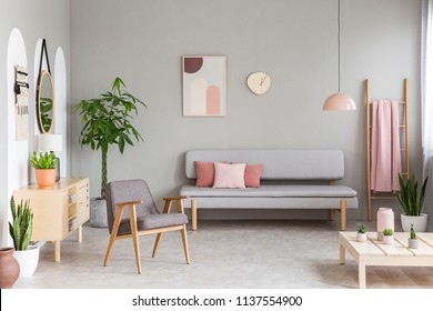 Sofa with pastel pink cushions in real photo of grey living room interior with retro armchair, fresh green plants, simple poster and blanket hanging on ladder