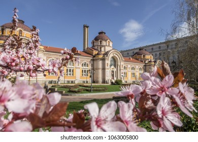SOFIA, BULGARIA - 4TH APRIL 2018: The outside of the Regional History Museum of Sofia  during the day in the spring. Flowers can be seen in the foreground