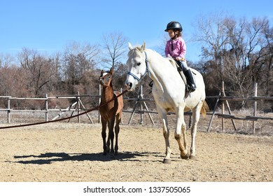 Sofia, Bulgaria - March 4, 2019: Little girl on a horseback riding a white mare. Little brown foal canters alongside. Horse riding lessons for children.