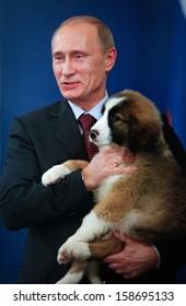 SOFIA, BULGARIA - NOVEMBER 13: Russian Prime Minister Vladimir Putin cuddles Bulgarian breed sheepdog puppy named Buffy,at Bulgaria's Council of Miisters office in Sofia, Bulgaria on November 13, 2010