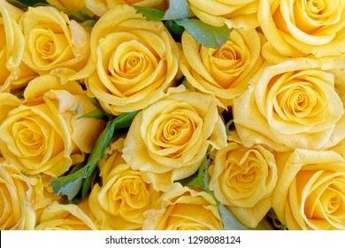 soft and airy yellow roses bouquet top view close up, filtered image as a natural background