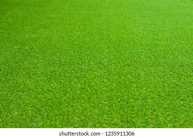 Soft artificial grass cover. Artificial turf on backyard. Green grass background