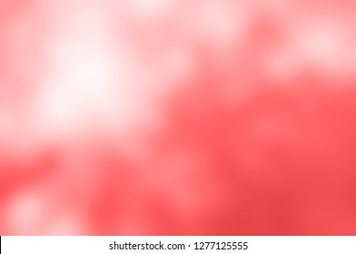 Soft background blur of coral pink, dappled with white light.