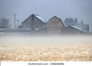 A soft blanket of mist hovers above the cold agricultural land in front of vintage wooden farm buildings during the early spring morning.