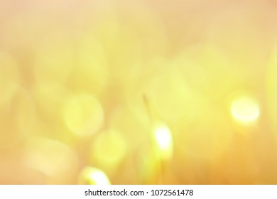 Soft blureed background, Yellow abstract, Sunny day, Summer time, Be happy