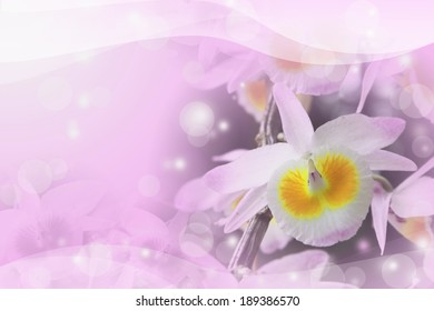 Soft blurred orchid purple background.