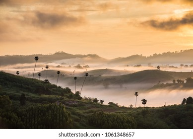 Soft blurred photo in the morning view point with mountain mist at Khao Kho  Phetchabun is  most famous travel place in Thailand