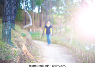 Soft and blurry image: Woman walking alone in the nature on road in autumn afternoon. Beautiful autumn scene.with sunlight