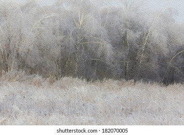 Soft, dreamy photo of generic winter landscape - frozen grass in foreground and birch forest, stylized and filtered to resemble an oil painting