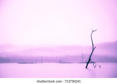 soft focus abstract of fantasy scene natural lake and mountain environment landscape with  purple pink monochrome, abstract background for copy text space