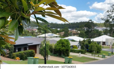 Soft Focus Background with tree in foreground of Australian Suburb