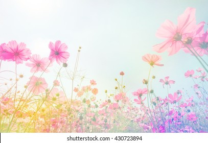 pastel flower background images  stock photos   vectors shutterstock Pastel Spring Flowers Border Cute Clip Art