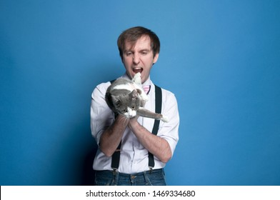 soft focus of handsome fooling around man in shirt and suspender holding and looking at cute gray and white cat and showing as if about to eat cat on blue background